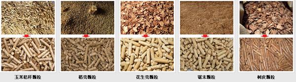 农作物玉米秸秆使用秸秆颗粒机可直接加工成牛羊猪营养颗粒饲料