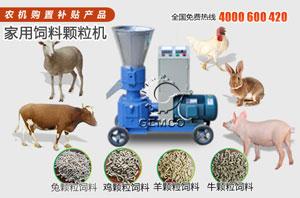 使用玉米秸秆饲料颗粒机加工牛羊猪兔子饲料颗粒