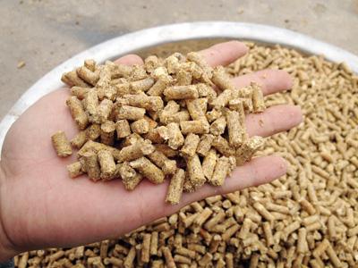 使用吉姆克400型饲料颗粒机加工出来的颗粒饲料成品图